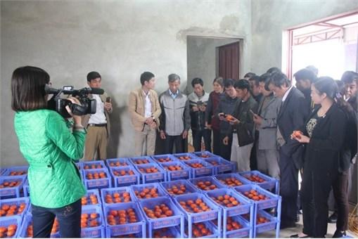 """Hội thảo báo cáo kết quả đề tài NCKH """"Nghiên cứu, ứng dụng màng sinh học chitosan kết hợp axit axetic để bảo quản quả cam Đường Canh tại tỉnh Bắc Giang"""""""