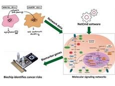 Nghiệm thu đề tài NCKH cấp trường về phân tích dữ liệu hệ gene của 16 loại ung thư phổ biến