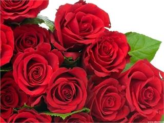 Thư chúc mừng của Hiệu trưởng nhân ngày thành lập Hội liên hiệp Phụ nữ Việt Nam 20/10